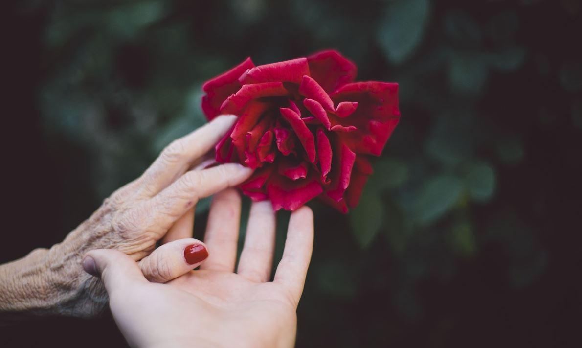 mains abimées hiver soins creme